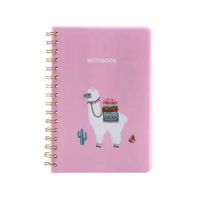 Top manufacturer cartoon spiral student notebook